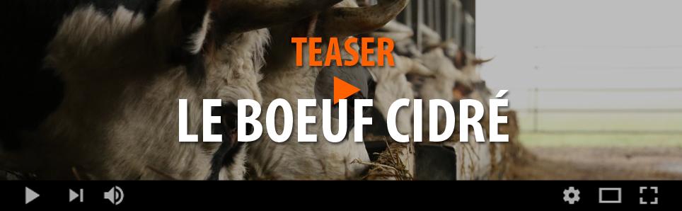 Teaser Boeuf Cidré
