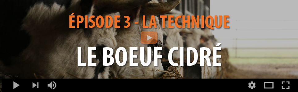 Boeuf Cidré - La Technique